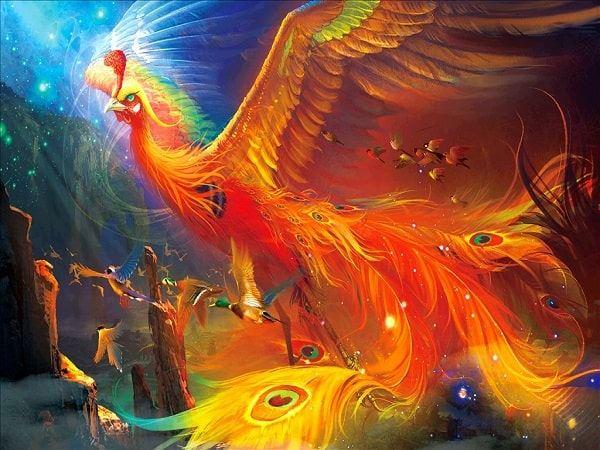 Mơ thấy chim phượng hoàng có phải điềm báo tài lộc?