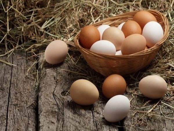 Mơ thấy Trứng là điềm báo gì